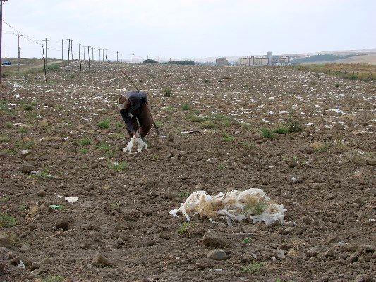 معرفی 26 پرونده آلودگی خاک به مراجع قضایی در اردبیل