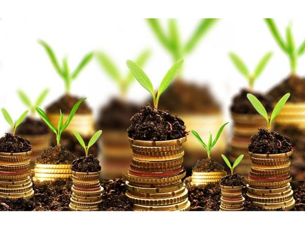 پرداخت 75 میلیارد تسهیلات به واحدهای کشاورزی نکا