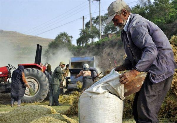 آغاز حرکت جهشی برای پیشبرد بیمه اجتماعی کشاورزان