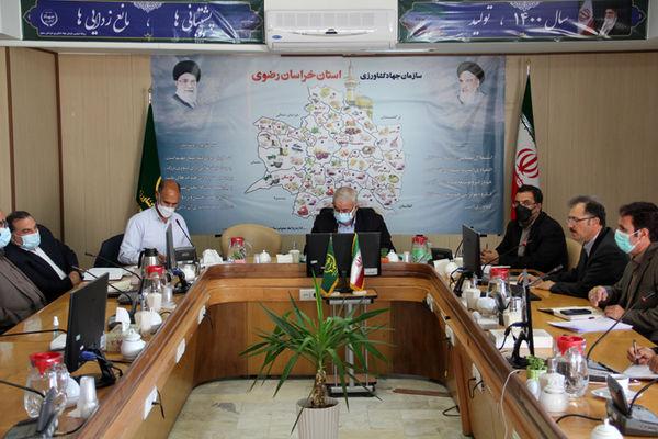 برگزاری وبینار کشت پاییزه استان