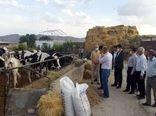 دهگردشی  نماینده مردم شیروان در مجلس شورای اسلامی و دیدار با جمعی از باغداران و کشاورزان