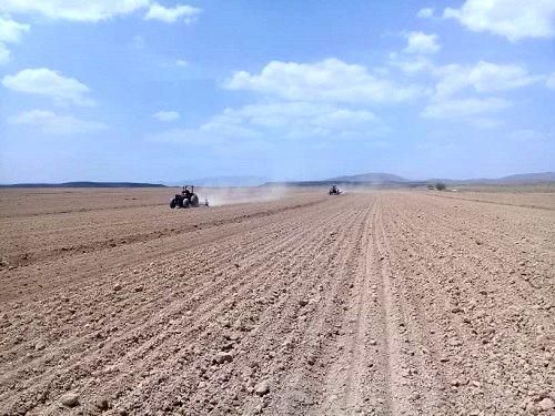 پیشبینی افزایش کاشت چغندر قند در خرم بید
