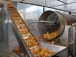 50 هزارتن به ظرفیت فرآوری محصولات کشاورزی چهارمحال و بختیاری اضافه می شود