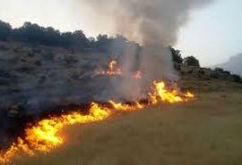 آتشسوزی اراضی ملی روستای بلغان شیروان مهار شد