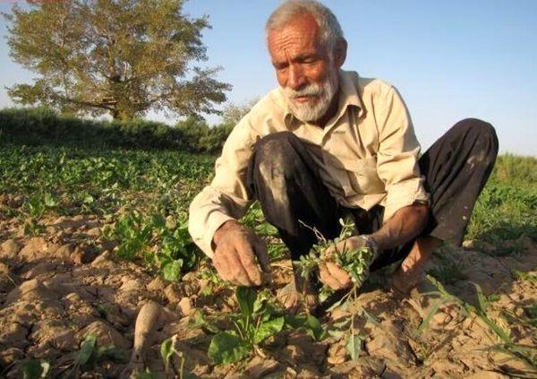 پرداخت تسهیلات به مستمریبگیران روستایی و عشایری استان ایلام