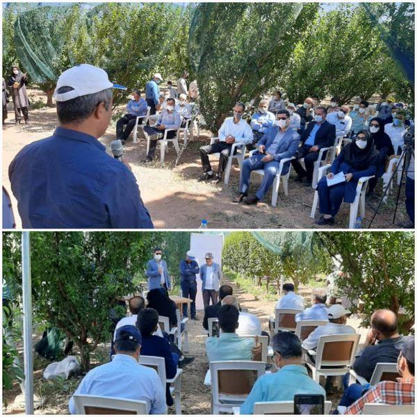 برگزاری دوره آموزشی آشنایی با سایبانهای کشاورزی در سطح ملی در استان قزوین