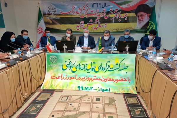 پتانسیل تولید ۲۰۰ هزار تن کلزا در استان خوزستان