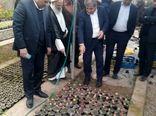 بهرهبرداری از یک واحد گلخانه گوجه فرنگی در محی آباد کرمان
