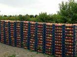 پیشبینی تولید ۲۰۰ هزار تن محصولات باغی در چهارمحال و بختیاری