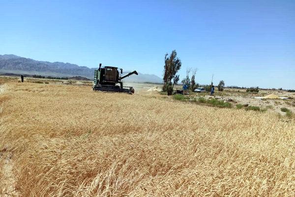 افزایش صادرات کشاورزی اصفهان در دولت تدبیر، حاصل همت و برنامهریزی
