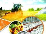 افزایش بیش از 6.5 درصدی نرخ  اشتغال کشاورزی در خراسان شمالی