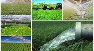 ۱۶۵ طرح مختلف جهاد کشاورزی آماده بهره برداری