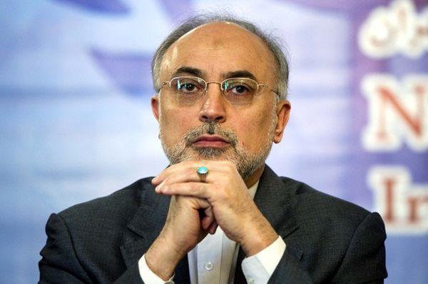 در ساخت راکتور توان متوسط با ایران همکاری میکنیم