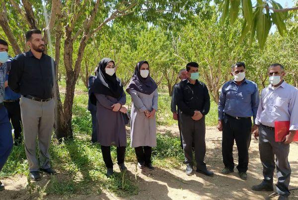 بازدید آموزشی ترویجی کشاورزان اردلی از باغات شهرستان سامان