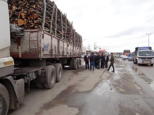 کشف بیش از 120 تن چوب قاچاق در شهرستان میاندوآب