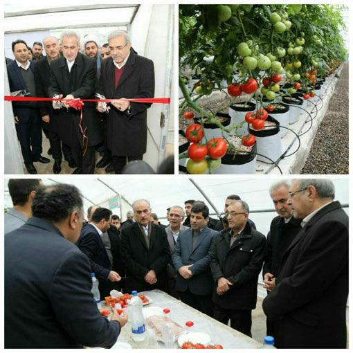 سه طرح سرمایهگذاری بخش کشاورزی در منطقه آزاد ارس به بهرهبرداری رسید