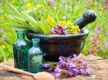3 نرم افزار  بازار مجازی در زمینه گیاهان دارویی رونمایی میشود؛ هفته آینده