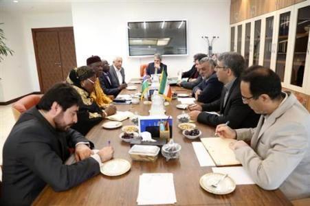 حجتی: ایران آماده همکاری کشاورزی با گامبیا است/ ظرفیت بالای گامبیا برای آبزی پروری