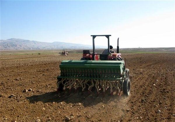 پیشبینی تولید  ۱۴ میلیون و ۵۰۰ هزار تن گندم در سال زراعی 99-98