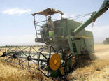 برداشت 40 هزار تن گندم از مزارع شهرستان مراغه