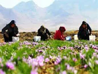 فعالیت ۲۴ صندوق خرد اعتبارات زنان روستایی در شهرستان کوهرنگ