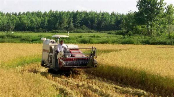 اعطای ۱۶میلیارد تومان تسهیلات در جهت مکانیزاسیون کشاورزی شهرستان صومعهسرا