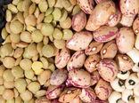 46 هزار و 268 تن انواع حبوبات در کردستان تولید می شود