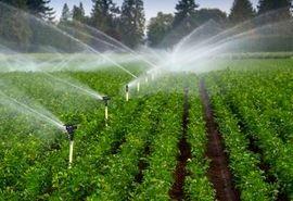 اجرای طرح هوشمندسازی سامانههای نوین آبیاری در مزارع شرکتهای زراعی