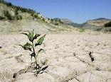خشکسالی 20هزار میلیارد تومان به کشاورزی خسارت زد