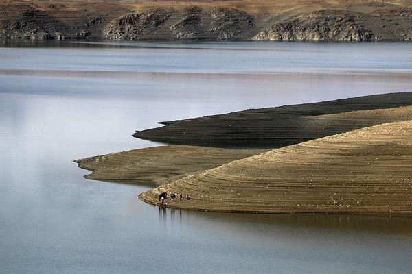 جمعآوری بیش از ۴۰۰۰ متر دام از سد زایندهرود