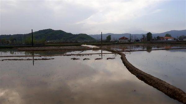 اولین خزانه مکانیزه در شهرستان شفت احداث شد