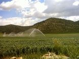 تسهیلات و فرهنگ، لازمه توسعه آبیاری نوین است