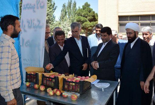 بهره برداری از 32 پروژه  بخش کشاورزی استان آذربایجان شرقی در هفته دولت