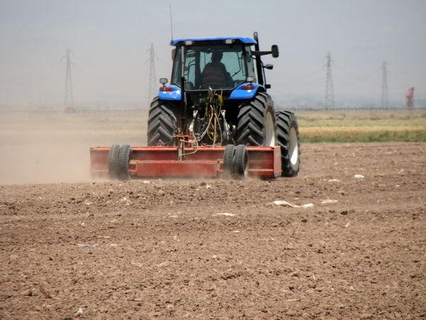 15700 هکتار از اراضی کشاورزی بوئین زهرا زیر کشت جو رفت