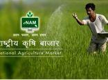راه اندازی سامانه رصد بازار در هندوستان برای کشاورزان