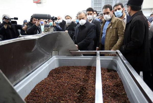 افتتاح طرح تولیدی فرآوری کشمش در شهرستان بناب با حضور وزیر صمت