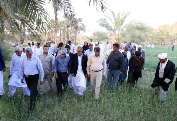 قدردانی وزیر جهاد کشاورزی از مشارکت همگانی برای مبارزه با آفت ملخ صحرایی در سیستان و بلوچستان