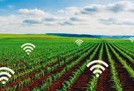 هوشمند سازی لازمه حرکت به سمت کشاورزی تجاری