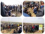 برگزاری کارگاه آموزشی هرس باردهی انگور در شهرستان بناب