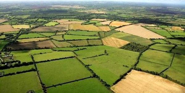 طرح سیستم یکپارچهسازی اطلاعات کشاورزی (سیاک) در استان قزوین اجرا میشود