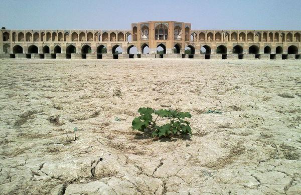پشمک یزد با طعم گز اصفهان