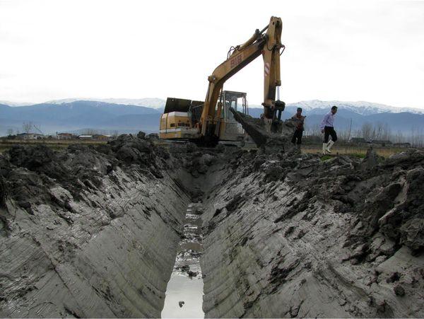 5700 هکتار از اراضی شالیزاری آمل تجهیز و نوسازی شد