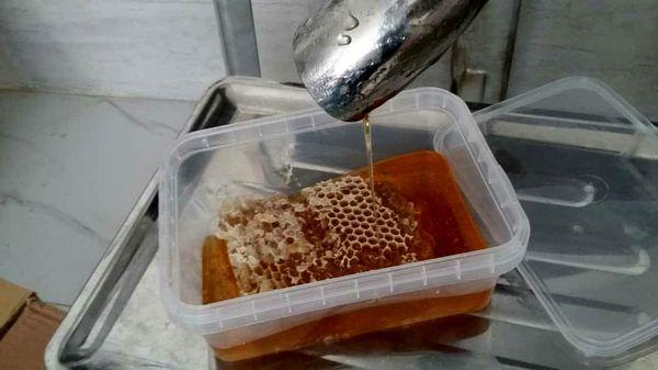 آغاز فعالیت کارگاه بسته بندی عسل در فارسان