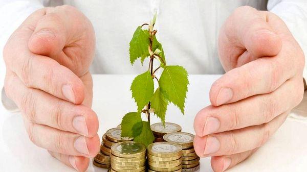 رشد منفی ١٧/٦ درصدی سرمایهگذاری در کشاورزی
