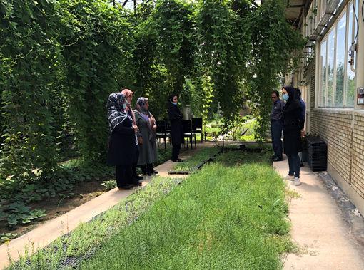 بازدید زنان روستایی شهرستان بناب از سایت گیاهان دارویی گلخانه فدک