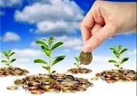 جذب 7 میلیارد  ریال تسهیلات خوداشتغالی توسط  صندوق خرد اعتباری روستایی آبیک