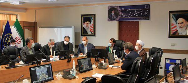 بازگشت مرغداری های غیرفعال و نیمه فعال استان تهران به چرخه تولید