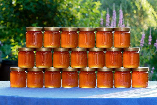 استاندارد عسل در شورای عالی استاندارد اجباری شد/ واگذاری مسئولیت استاندارد عسل صنعتی به جهادکشاورزی