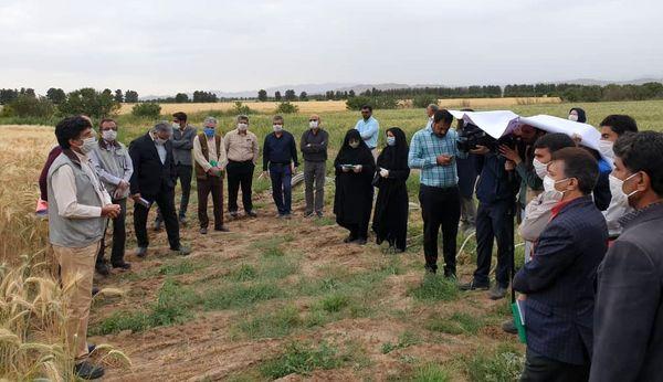 آموزش و ترویج کشاورزی در هر شرایطی، تعطیل نیست