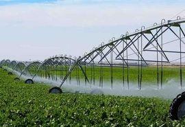 کشاورزی مدرن موجب توسعه اقتصادی در شهرستان تیران و کرون شد